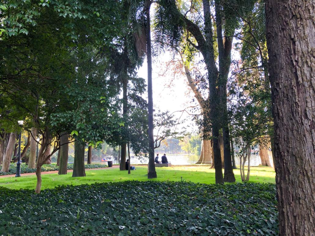 Fondo Verde del Clima destinará US$ 82 millones para combatir la deforestación en la Argentina