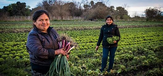 Campaña Mujeres Rurales