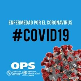 Novel Coronavirus 2019, Actualización 11-01-2021